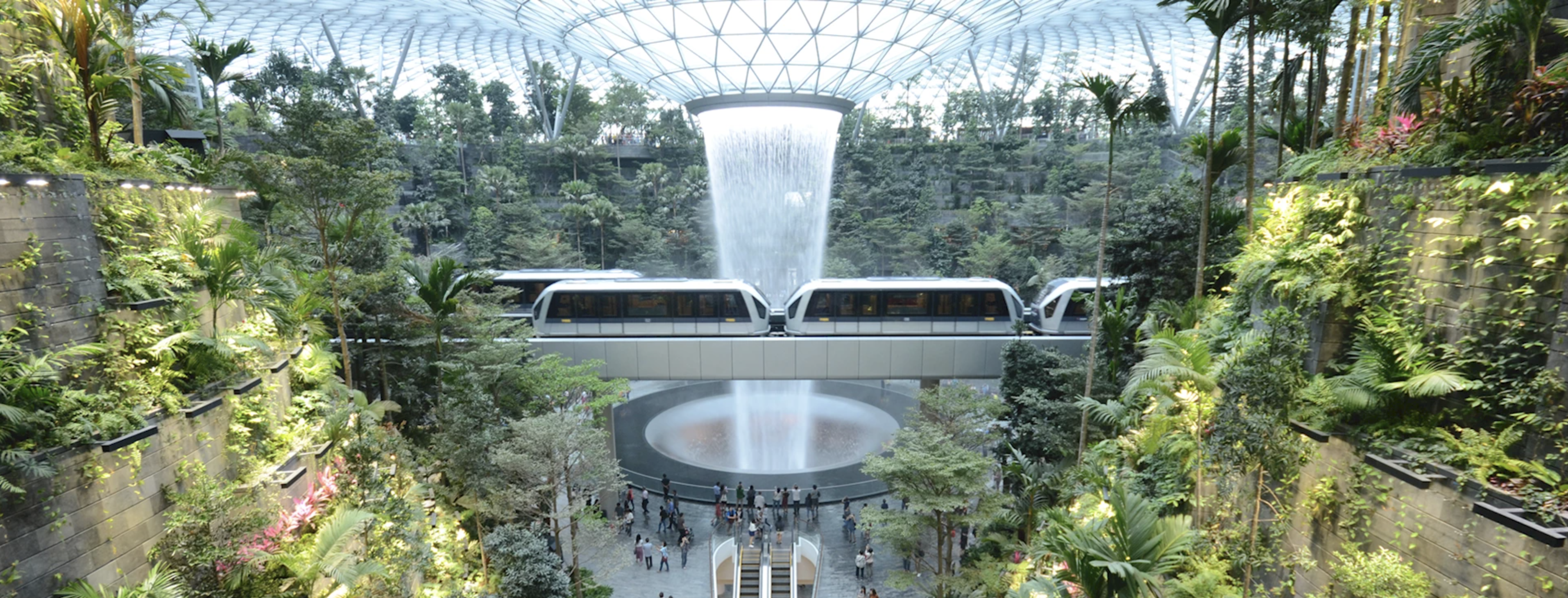 Singapore's Changi Airport to Become Contactless!